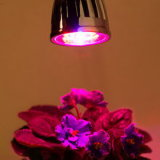 High Power Energy Saving LED Grow Bulb Light