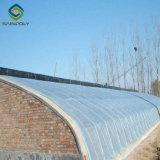 Serra solare di agricoltura per l'orticoltura