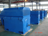 Iec Standard High Voltage Electric Motor 560kw-4-10kv