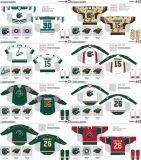 Customized Homens Mulheres Crianças Liga de Hóquei Americana Houston Aeros 2007-2013 Hóquei no Gelo Jersey