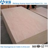 Taille Bintangor Customed/Okoume/peuplier/Birch/contreplaqué de bois de placage de pin