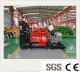 Ce ISO keurt de Prijs van de Generator van het Steenkolengas van de Macht/Van het Gas van de Producent (goed 300KW)