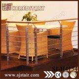 Balaustrada ao ar livre do aço inoxidável para a venda/balaustrada da escada (SJ-603)