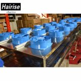 Hairise umschaltbarer Riemen-Einstechbewegung-Reis-Förderanlagen-Lieferant