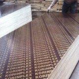Pressione a quente de compensado de madeira contraplacada/Prédio Marinho