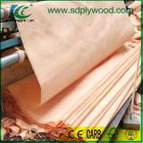 Impiallacciatura di legno del taglio rotativo di Okoume per compensato, la decorazione ecc
