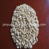 Roher aufbereitender geblichener Erdnuss-Kern
