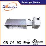 Hydroponic를 위한 에너지 절약 315W CMH 밸러스트는 빛을 증가한다