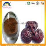 건강식 Ganoderma Lucidum 버섯 포자 분말