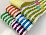 Color binario rayado poliéster Algodón Webbing Spot suministro de bienes