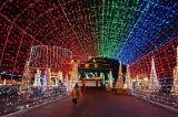LED Decorative Tree Christmas Holiday Light 100 Tubas LED Strip