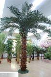 Árboles artificiales de la palmera artificial profesional del fabricante para la decoración