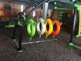 Apparatuur van de Speelplaats van de Dia van kinderen de Plastic Openlucht (YL75301)