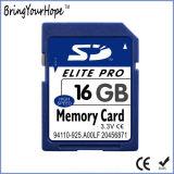 Total real de alta velocidade 16GB do cartão de memória SD (16GB SD)