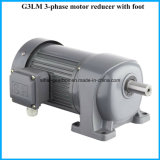 G3 motores engrenados helicoidais do motor de série do eixo 18mm