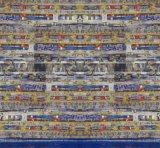 Digital-Textildrucken-Gewebe-Polyester-Gewebe 100% (PF-031)