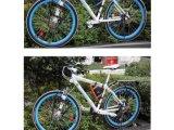 Sac de bicyclette sur le module d'outil de triangle de module de tube