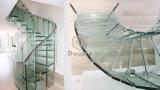 De moderne Gebogen Trappen van het Glas/bogen het Traliewerk van het Glas