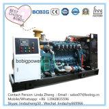 80kw 100kw 120kw 150kw Biogas 메탄 가스 발전기 세트