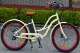 L'opération chaude de vente par l'E-Vélo de plage avec En15194 a reconnu