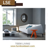 Conveninet e disegno moderno mobile pulito del sofà del salone