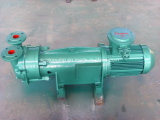 flüssige Vakuumpumpe des Ring-2BV6 111