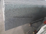 Biaco Sardo G439 화강암 지면 도와 화강암 석판