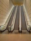 Trasporto pubblico delle scale mobili resistenti