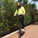 Bicicleta de Electricr do poder superior da maçaroqueira do vento com bateria de lítio