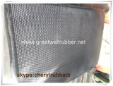 De kleine Mat van de Vloer van de Nagel Rubber/RubberBlad, de RubberDeur en Mat van de Keuken