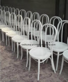 Heißer Verkauf Thonet Bentwood Stuhl für Verkauf