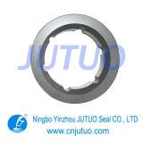 Le joint mécanique/fritté de carbure de silicone (SSIC)
