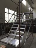 Alunimum de la escalera por Ringlock Andamio