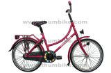 Vélo de ville (TMS-20GD)