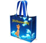 Pp Geweven het Winkelen Zak Bag/Promotional (hbwo-036)