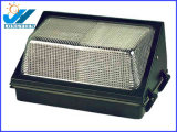 La luz del tunel de luz/al aire libre (VF-151)