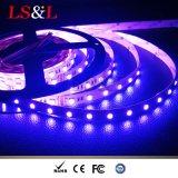 RGBW+White 가벼운 LED 밧줄 빛 다채로운 훈장 끈 빛