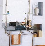 Het Kabinet van de Muur van de badkamers, de Kabinetten van de Spiegel van de Badkamers (A040)