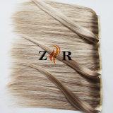 Doppio cinese della parte dei capelli del Ponytail di prezzi all'ingrosso della fabbrica dissipato