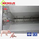 عمليّة بيع حارّ مغذّ آليّة لأنّ إنهاء خنزير