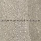 De openlucht Vloer die van de Tuin van Types de Tegels van het Porselein van de Dikte van 20mm stappen
