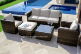 2018 nuova mobilia di vimini, mobilia stabilita del patio del sofà del rattan