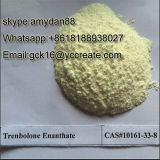 Steroid-rohes Puder Trenbolone Enanthate (Parabolan)