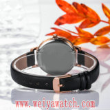 OEM/ODM Leather Strap Quartz Casual Ladies Wrist Watches (Wy-17030A)