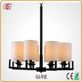 LEDのペンダント灯のホールLEDランプ屋内ランプLEDの吊り下げ式の軽く熱い販売のための現代天井灯