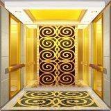 강한 방위 기능 세륨을%s 가진 Fujizy 운임 엘리베이터는 승인했다