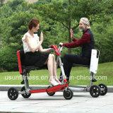 Три колеса электрический скутер/дешевые электрический Trike /E-велосипед
