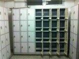 Un armadio dei 4 portelli per spogliatoio - punto no. Le32-4