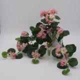 Venta de flores de seda Pennywort caliente