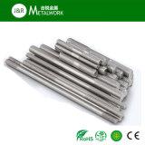 Boulon de goujon d'extrémité d'amorçage de l'acier inoxydable SS304 de la qualité A2-70 double